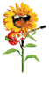 SunflowerMan_logo_64x100